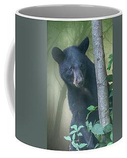 Baby Bear Takes A Peek Coffee Mug by John Haldane