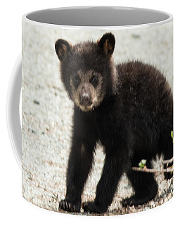 Baby Black Bear Coffee Mug