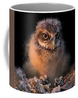 Baby Burrowing Cuteness Coffee Mug