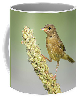 Baby Common Yellow Throat Warbler Coffee Mug