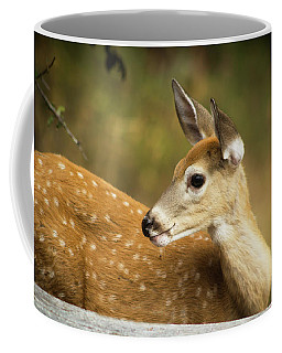 Baby Deer Coffee Mug