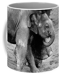 Baby Elephant Security Coffee Mug by Wes and Dotty Weber