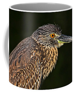 Coffee Mug featuring the photograph Baby Face - Yellow-crowned Night Heron  by HH Photography of Florida