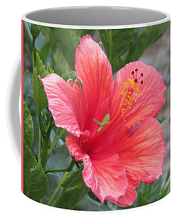 Coffee Mug featuring the photograph Baby Grasshopper On Hibiscus Flower by Nancy Nale
