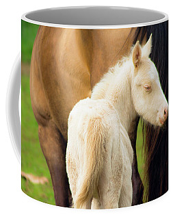Baby Horse By Mom Coffee Mug