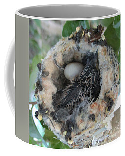 Baby Hummingbird 2 Coffee Mug