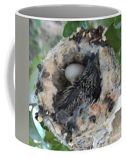 Baby Hummingbird 2 Coffee Mug