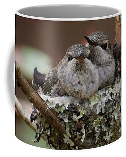 Coffee Mug featuring the photograph Baby Hummingbirds In Nest by Patricia Strand