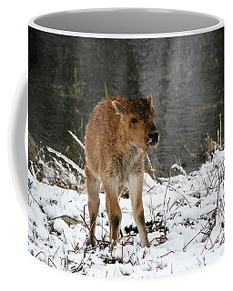 Coffee Mug featuring the photograph Baby, It's Cold Outside by Gary Hall