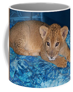 Baby Lion Coffee Mug