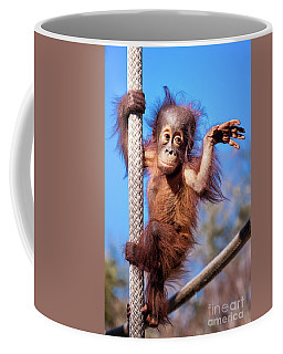 Baby Orangutan Climbing Coffee Mug by Stephanie Hayes