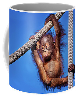 Baby Orangutan Hanging Out Coffee Mug by Stephanie Hayes