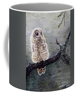 Baby Owl Coffee Mug by Judy Kirouac
