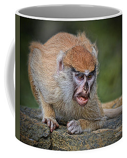 Baby Patas Monkey On Guard  Coffee Mug