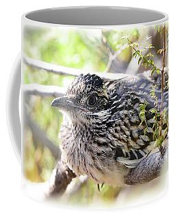 Baby Roadrunner  Coffee Mug