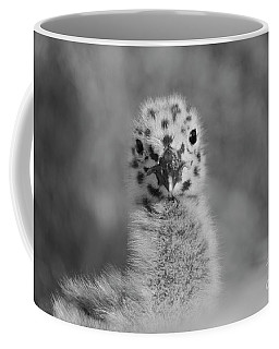 Coffee Mug featuring the photograph  Baby Seagull Spots    by John F Tsumas