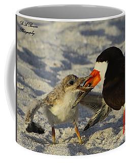 Baby Skimmer Feeding Coffee Mug
