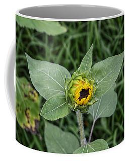 Baby Sunflower  Coffee Mug