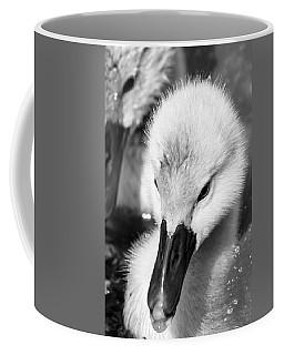 Baby Swan Headshot Coffee Mug