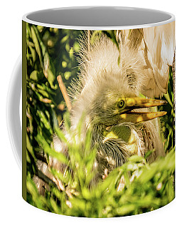 Coffee Mug featuring the photograph Baby White Egret by Jane Luxton