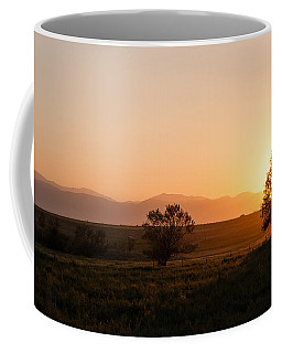 Coffee Mug featuring the photograph Back Lit Tree At Sunset by Monte Stevens
