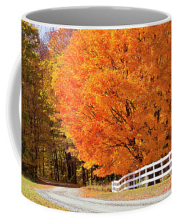 Back Road Autumn Maples Coffee Mug by Alan L Graham