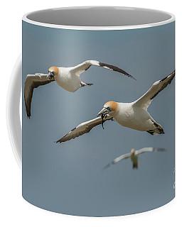 Back To The Colony Coffee Mug