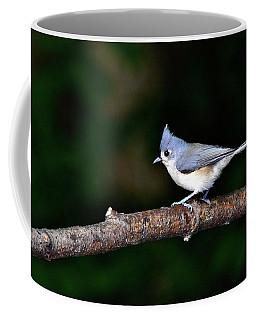 Back Yard Bird Coffee Mug