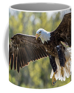 Backlit Eagle Coffee Mug