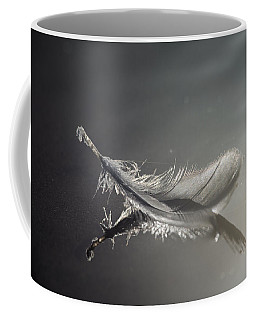 Backlit Feather Coffee Mug
