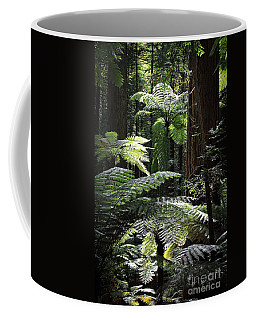 Backlit Ferns Coffee Mug