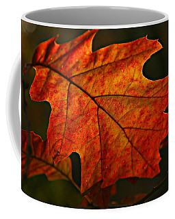 Coffee Mug featuring the photograph Backlit Leaf by Shari Jardina