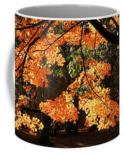 Backlit Orange Coffee Mug