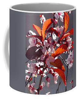 Backlit Pink Tree Blossoms Coffee Mug
