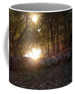 Backlit Trees Coffee Mug