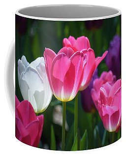 Backlit Tulips Coffee Mug