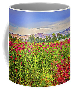 Backroad Beauty In Southern California Coffee Mug