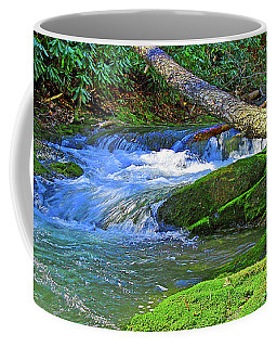 Backwoods Stream Coffee Mug