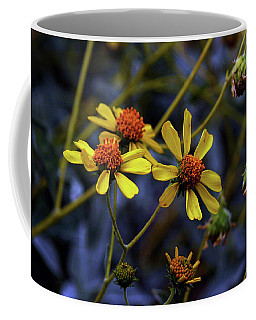Coffee Mug featuring the photograph Backyard Beauty - Strough Canyon Park 002 by Lon Casler Bixby