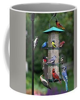 Backyard Bird Feeder Coffee Mug