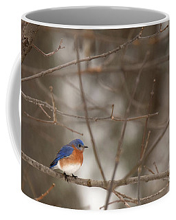 Backyard Blue Coffee Mug