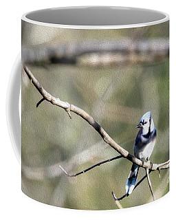 Backyard Blue Jay Oil Coffee Mug