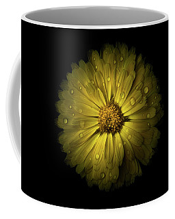 Coffee Mug featuring the photograph Backyard Flowers 10 Color Version by Brian Carson