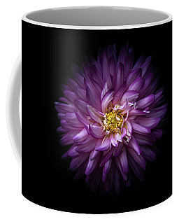 Coffee Mug featuring the photograph Backyard Flowers 20 Color Version by Brian Carson