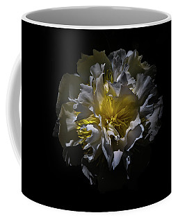Coffee Mug featuring the photograph Backyard Flowers 25 Color Version by Brian Carson
