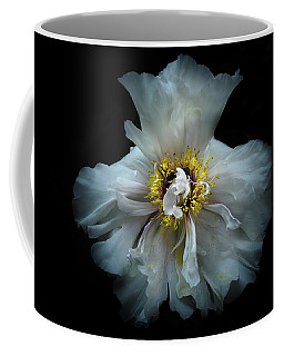 Backyard Flowers 49 Color Version Coffee Mug