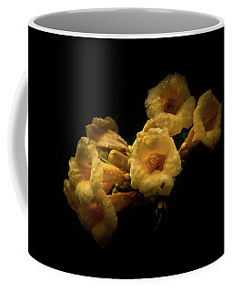 Backyard Flowers 63 Color Version Coffee Mug