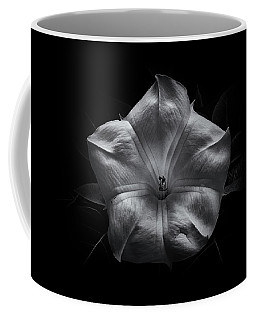 Coffee Mug featuring the photograph Backyard Flowers In Black And White 24 by Brian Carson