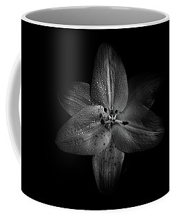 Coffee Mug featuring the photograph Backyard Flowers In Black And White 28 by Brian Carson