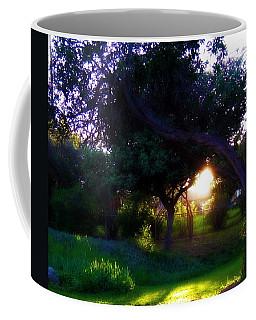 Coffee Mug featuring the photograph Backyard Light by Amanda Eberly-Kudamik